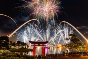Mixed 2 shots for this Illuminations Finale.